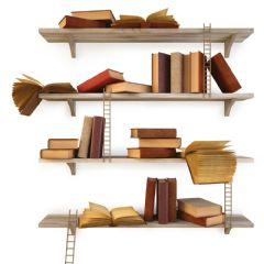 Costruire la biblioteca: l'inventario del patrimonio librario